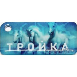 Card triple keychain Troika