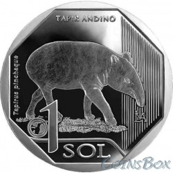Peru 1 salt 2018 Mountain tapir