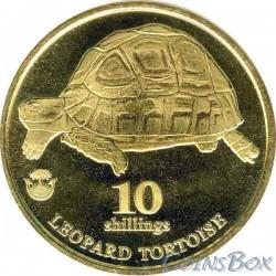 Biafra 10 shillings 2018. Leopard tortoise