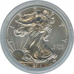1 USA Dollar 2013 Walking freedom. Eagle.